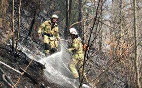xx01 280x175 - Nachbarliche Löschhilfe beim Waldbrand in Braz