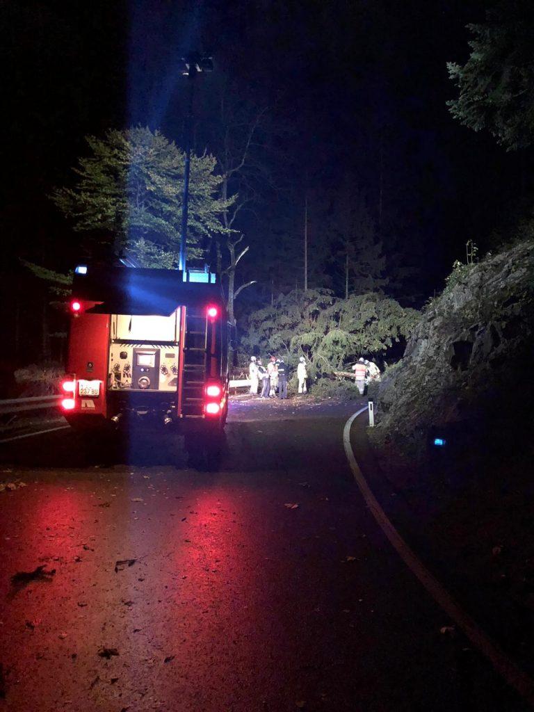 IMG 20181030 WA0003 768x1024 - Bäume versperren L82 wegen Wind