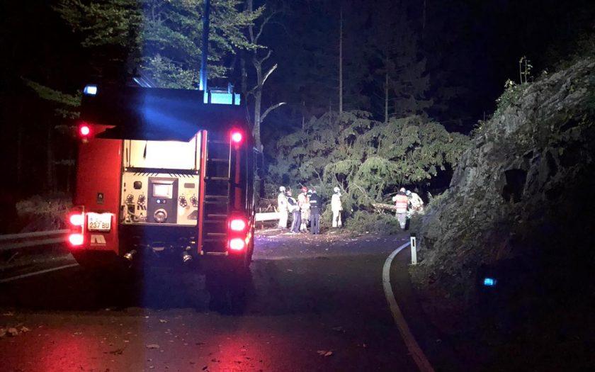 IMG 20181030 WA0003 840x525 - Bäume versperren L82 wegen Wind