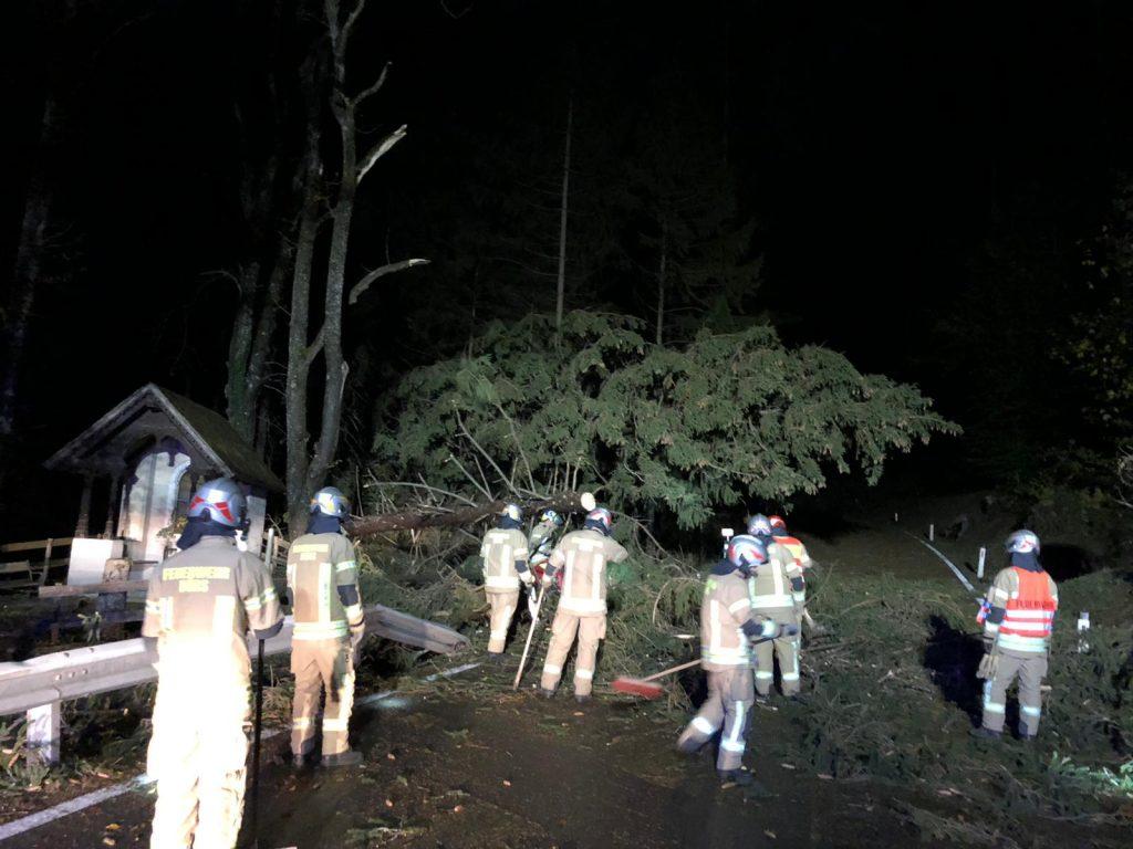 IMG 20181030 WA0005 1024x768 - Bäume versperren L82 wegen Wind