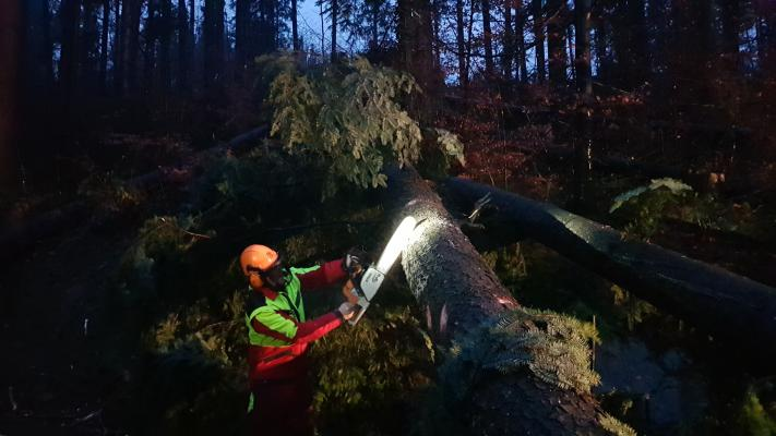 20181224 075431 resized - Bäume versperren L82